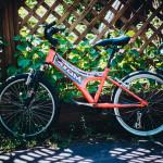 детский велосипед в прокат воронеж